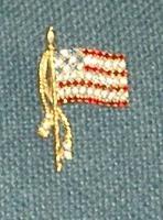 Gram\'s flag pin