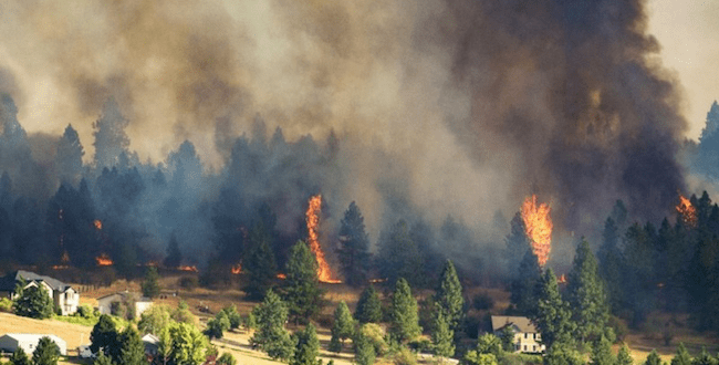GoFundMe image of Hart Road Fire
