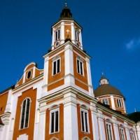 In Vino Vigor - Exkursion in die Steiermark