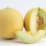 galia-melons