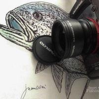 Olympus TG-1 Teleconverter lens TCON-T01 review