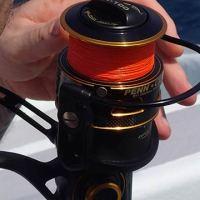 New PENN Clash reel tested against sailfish [video]