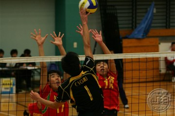 20131227-volleyball01