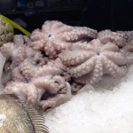 Octopus at the central market