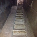 Stairs leading up from the cellar
