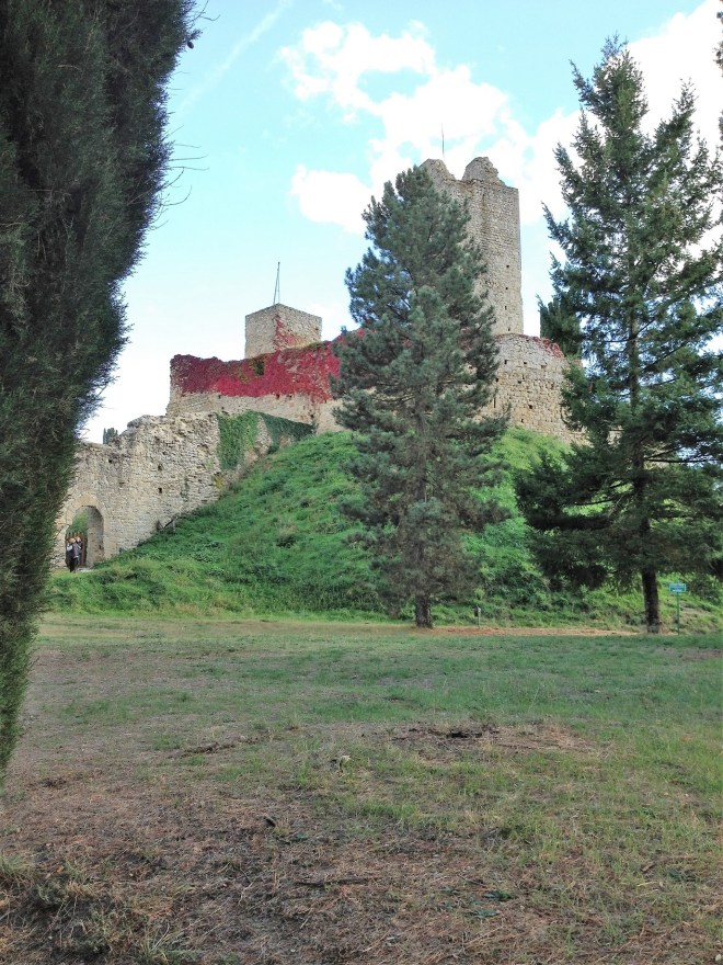 The view of the Castle