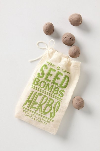Seed Bombs..a bright burst of color for the garden
