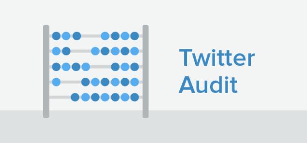 Twitter Audit-01