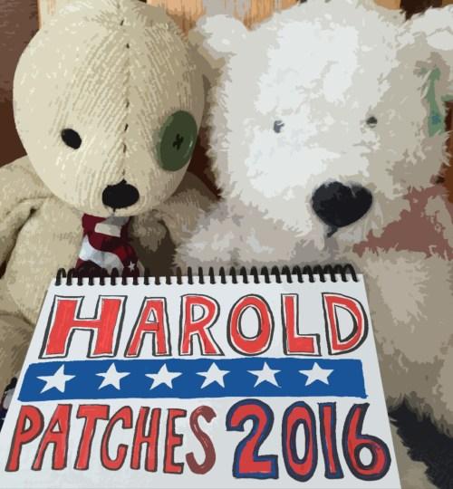 Harold-Pat-2016