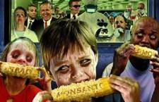САД убија Србију законом о ГМО