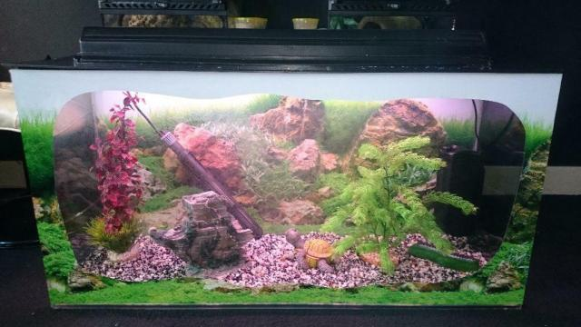 115 Litre Aquarium With Full Set Up | United Kingdom | Gumtree