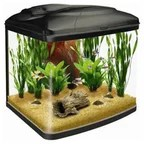 Edge Aquarium 46L in Gloss Black   Contemporary   Aquariums & Fish