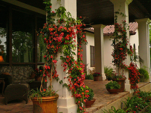 Long distance decor the front porch whats ur home story for Mediterranean front porch designs