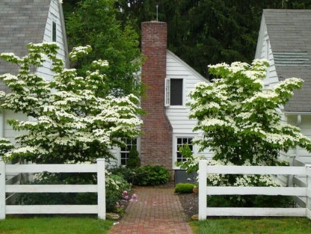 Distinctive Gardens