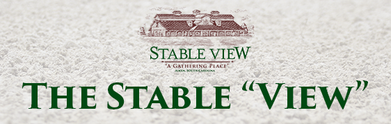 "[Archived] The Stable ""View"" – 8th Edition"