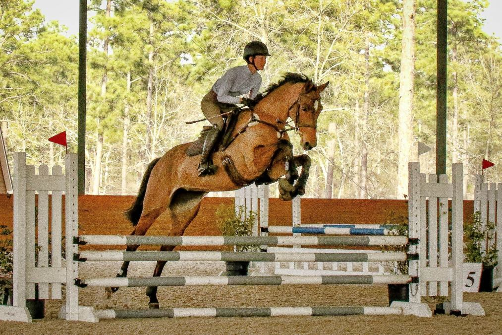 Stable View Jumper Nights Results – March 1, 2017