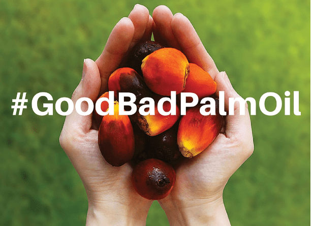 gopd bad palm oil