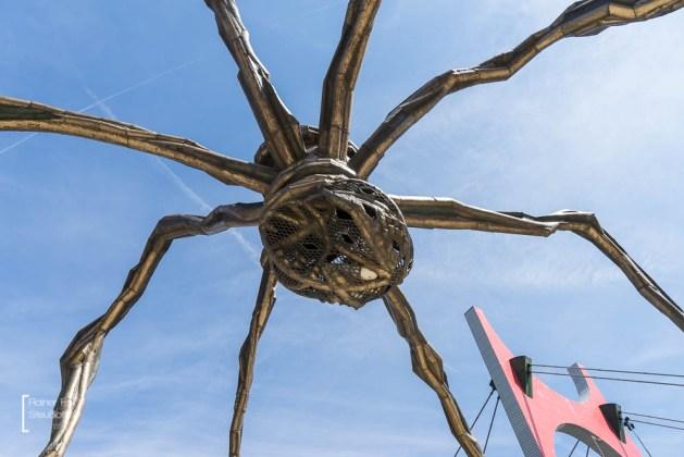 Die Spinne, Maman von Louise Bourgeois