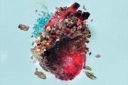 Audio: Gryffin & Bipolar Sunshine - 'Whole Heart'