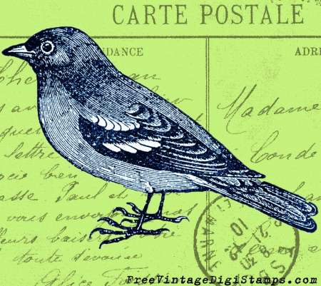Freebie: Sparrow Bird Digital Stamps
