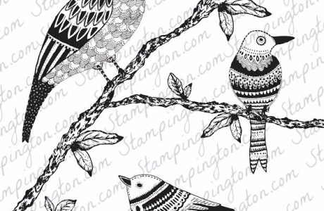 Freebie: Bird Coloring Page