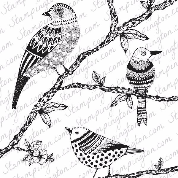 Freebie: Bird Coloring Page