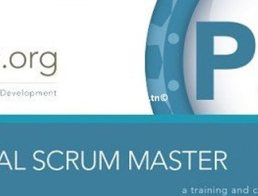 Formation Agile scrum Certification PSM