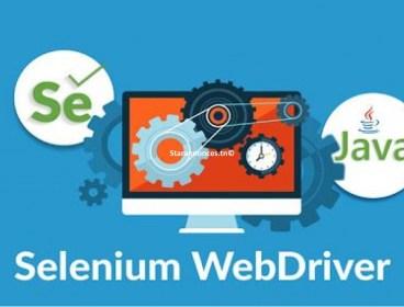 Réduction Formation pratique Selenium WebDriver