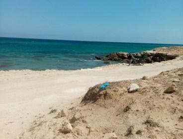 Lots vue sur mer Dar Allouch Kélibia