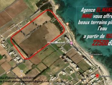 A vendre terrain à Dar Allouche Kélibia