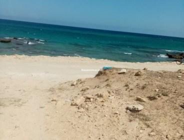 Terrain à plage Dar Allouche Kélibia