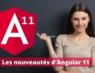 Formation Angular 11 disponible à distance / Présentiel