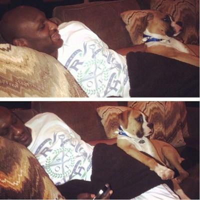 Lamar Odom & dog