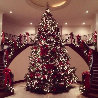 Jenner Christmas Tree