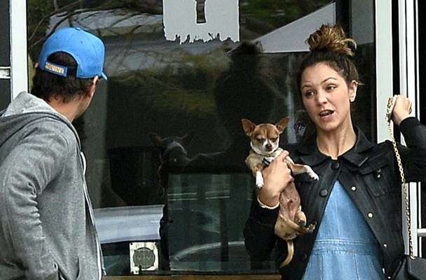EXCLUSIVE: Katharine McPhee and Ex Husband Nick Cokas Together Again