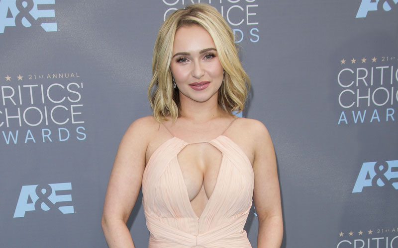 Wannabe Angelina Jolie >> Hayden Panettierre Parades Down The Red Carpet — Suffers ...