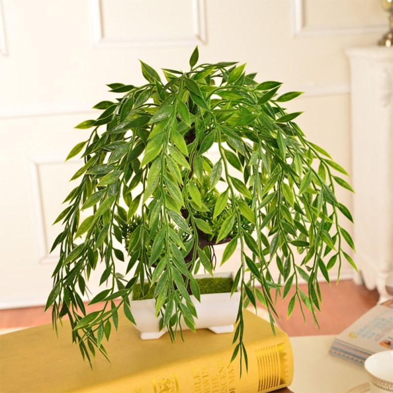 Large Of Weeping Willow Bonsai