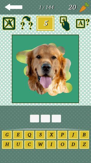 Animal Quiz 2015