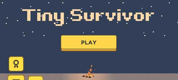 Tiny Survivor