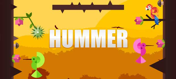 Hummer: The Humming Bird