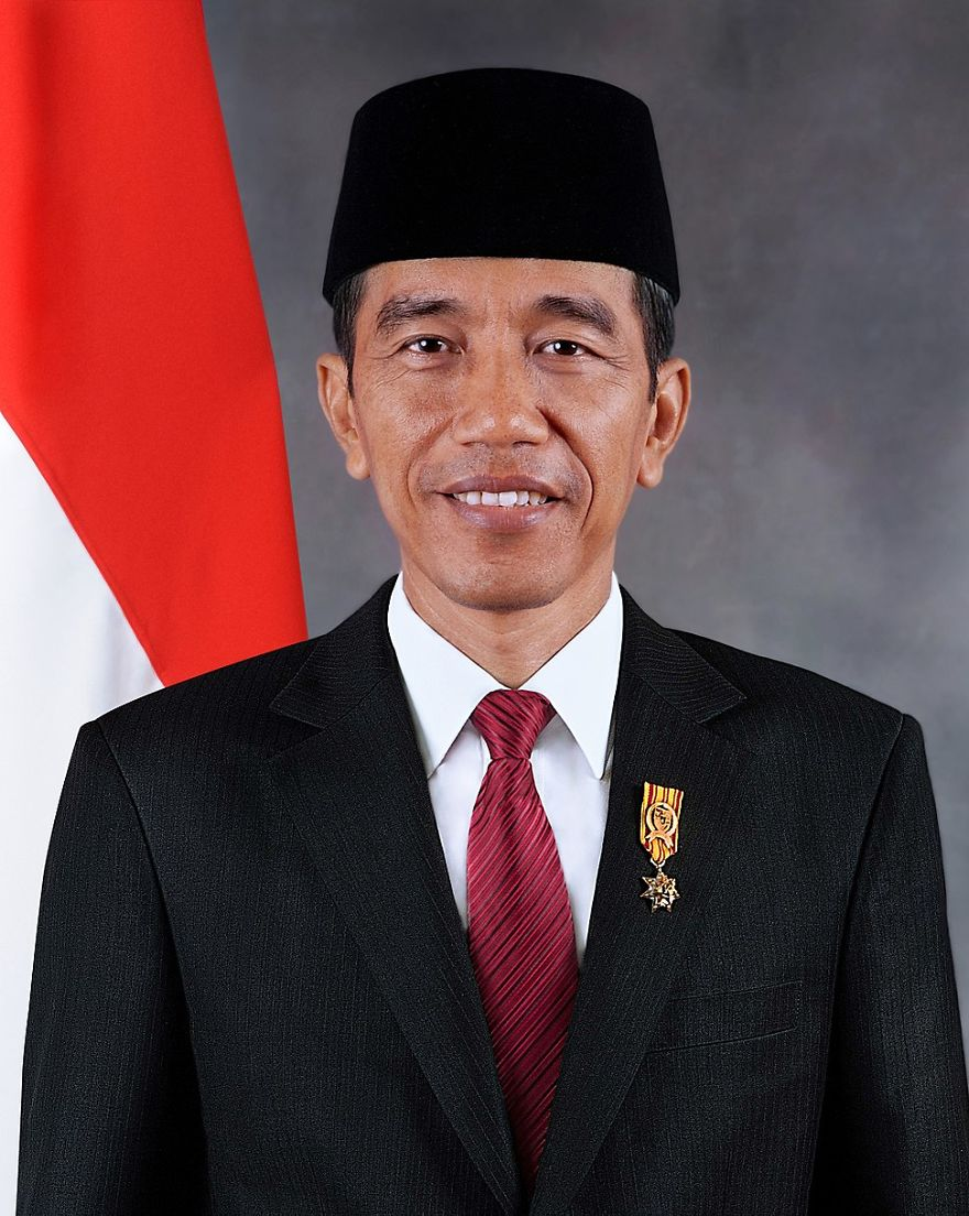 Someone Noticed That The President Of Indonesia Looks Exactly Like     This is the official portrait of Indonesian President Joko Widodo