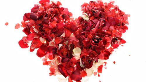 Medium Of Valentines Day Photos