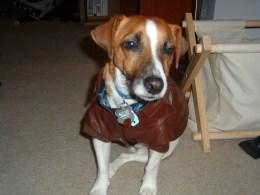 Jake in a Jacket