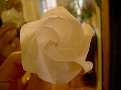 O³ Rose, 0.4