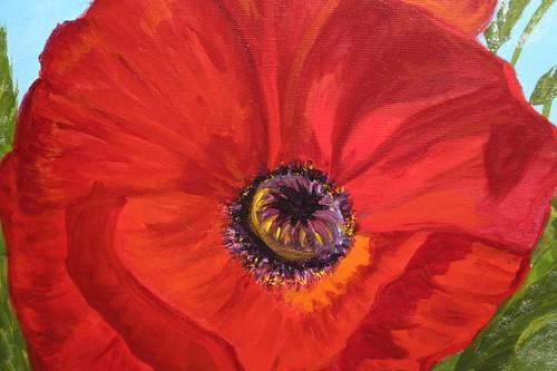 Heart of the poppy