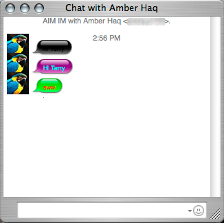 screenshot of an iChat session with an AIM beta user