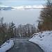 View of Juras:  Descending towards Geneva