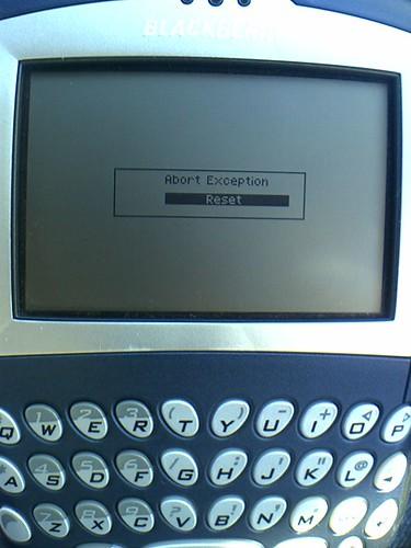 Dead Blackberry