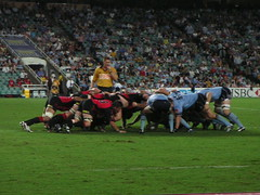 Scrum Down