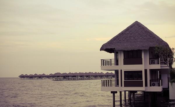 Golden Palm Tree Villa